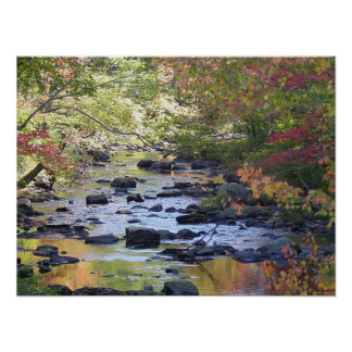 Creek in Connecticut Poster