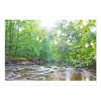 Creek - Summer Postcard