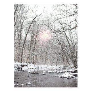 Creek - Winter Postcard
