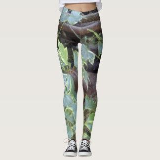 creeping ivy leggings