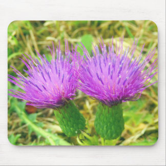 Creeping or Field Thistle Mouse Mat