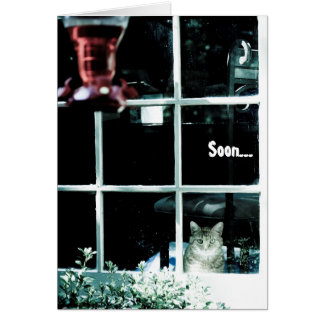 Creepy Cat Birthday Card