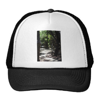 Creepy Forest Trucker Hat