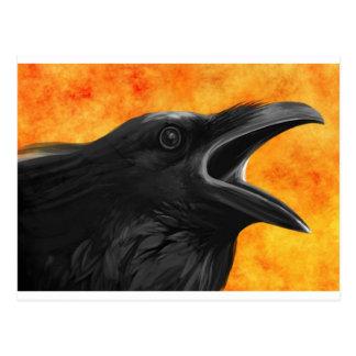 Creepy Raven Postcard