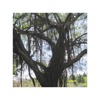 Creepy Tree Canvas Print