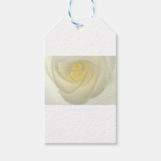 Creme Rose Eye Gift Tags