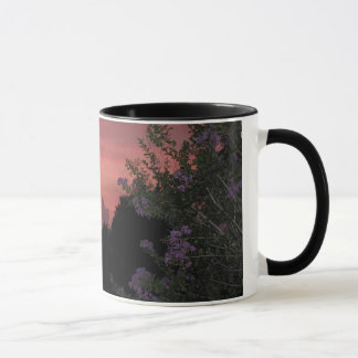 Crepe Myrtle and Sunset Mug