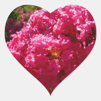 Crepe Myrtle Tree Magenta Flowers Heart Sticker