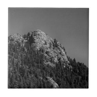 Crescent Moon and Buffalo Rock Tile