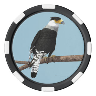Crested Caracara Clay Poker Chip Poker Chips Set
