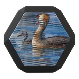 Crested grebe, podiceps cristatus, duck and baby black bluetooth speaker
