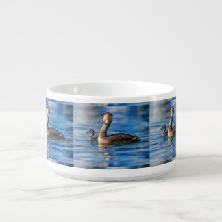 Crested grebe, podiceps cristatus, duck and baby bowl