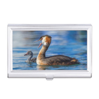 Crested grebe, podiceps cristatus, duck and baby business card holders