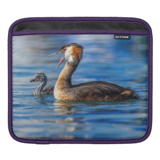 Crested grebe, podiceps cristatus, duck and baby iPad sleeve