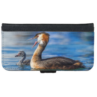 Crested grebe, podiceps cristatus, duck and baby iPhone 6 wallet case
