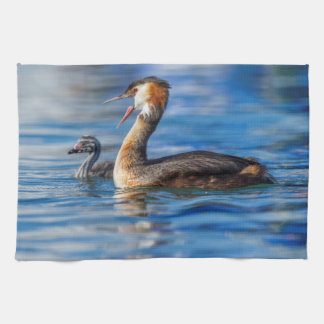 Crested grebe, podiceps cristatus, duck and baby kitchen towel