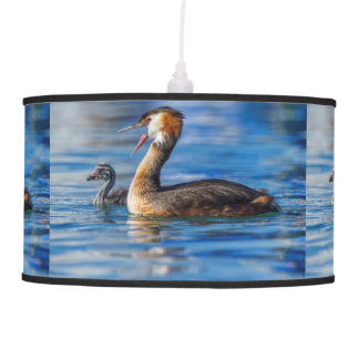 Crested grebe, podiceps cristatus, duck and baby pendant lamp