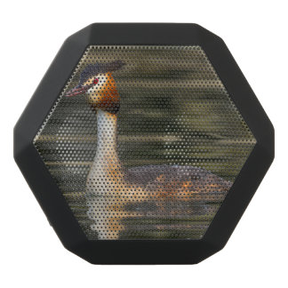Crested grebe, podiceps cristatus, duck black bluetooth speaker