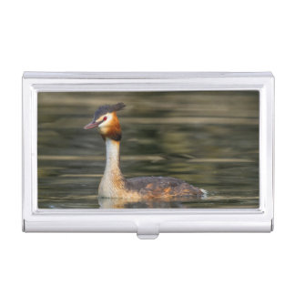 Crested grebe, podiceps cristatus, duck case for business cards