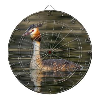 Crested grebe, podiceps cristatus, duck dartboard