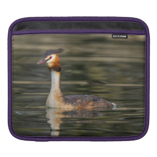 Crested grebe, podiceps cristatus, duck iPad sleeve