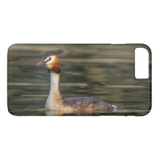 Crested grebe, podiceps cristatus, duck iPhone 8 plus/7 plus case