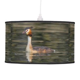 Crested grebe, podiceps cristatus, duck pendant lamp