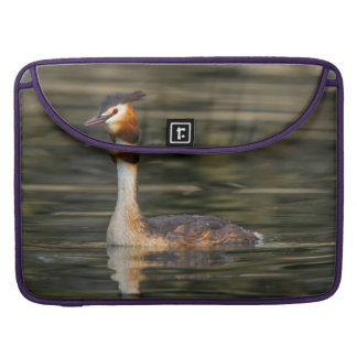 Crested grebe, podiceps cristatus, duck sleeve for MacBook pro