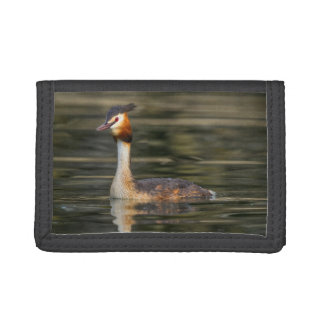Crested grebe, podiceps cristatus, duck trifold wallet