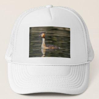 Crested grebe, podiceps cristatus, duck trucker hat