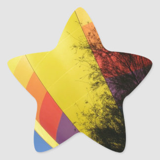 Crested Yellow Star Sticker