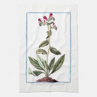 Cretan Vipers Bugloss Kitchen Towel