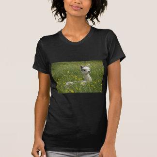 Cria In Buttercups T-Shirt