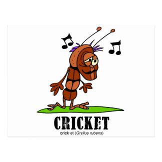 Cricket by Lorenzo © 2018 Lorenzo Traverso Postcard