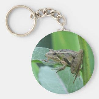 Cricket Frog Basic Round Button Keychain