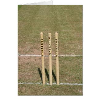 Cricket ground at Bickleigh, Devon, UK Card