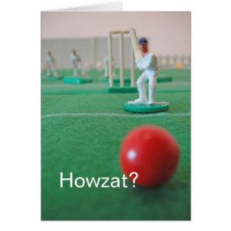 Cricket 'Howzat?' Card
