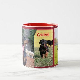 Cricket Mug