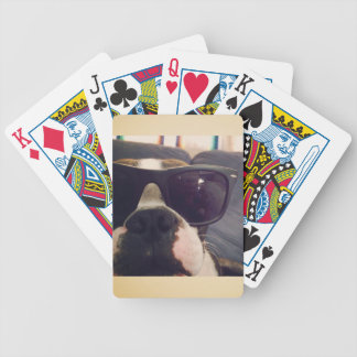 Crickett the Boston Terrier - playing cards