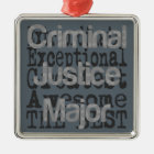 Criminal Justice Major Extraordinaire Metal Ornament