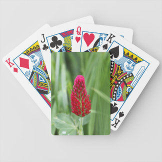 Crimson Clover Poker Deck