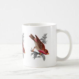 Crimson Fronted Finch Coffee Mug