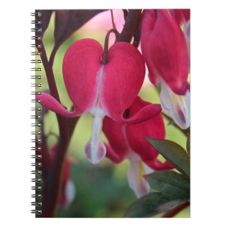 Crimson Jubilation Spiral Notebook