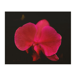 """CRIMSON ORCHID"" ON WOOD WOOD CANVAS"