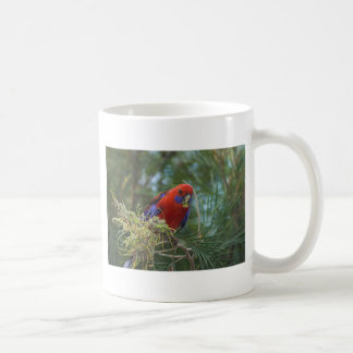 Crimson Rosella Coffee Mug