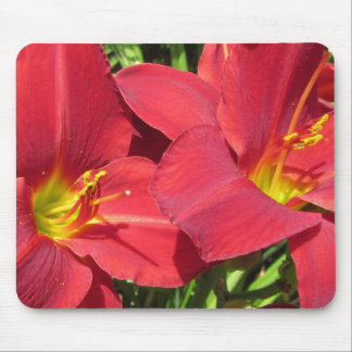 Crimson Shadows Red Daylilies Mouse Pad
