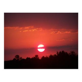 Crimson Sky Postcard