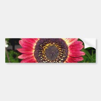 Crimson Sunflower Bumper Sticker
