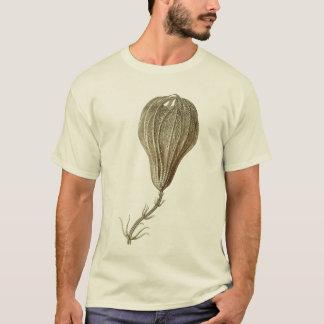 Crinoids T-Shirt