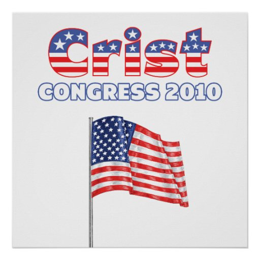 Crist Patriotic American Flag 2010 Elections Print